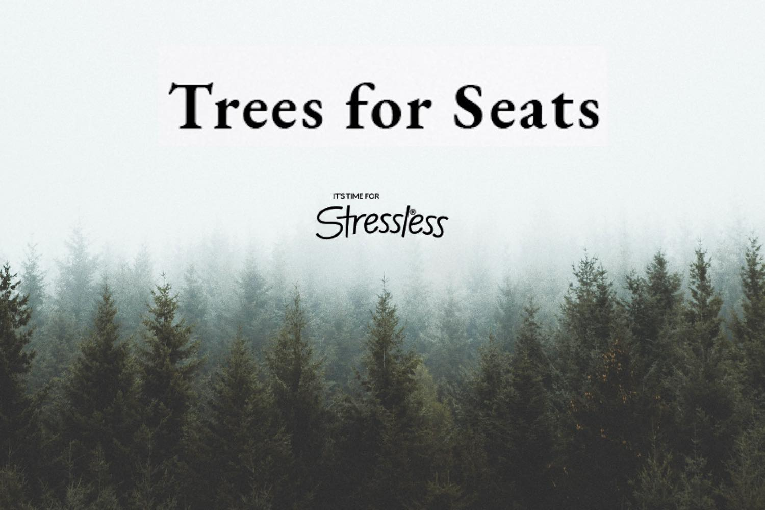 Stressless Trees for Seats