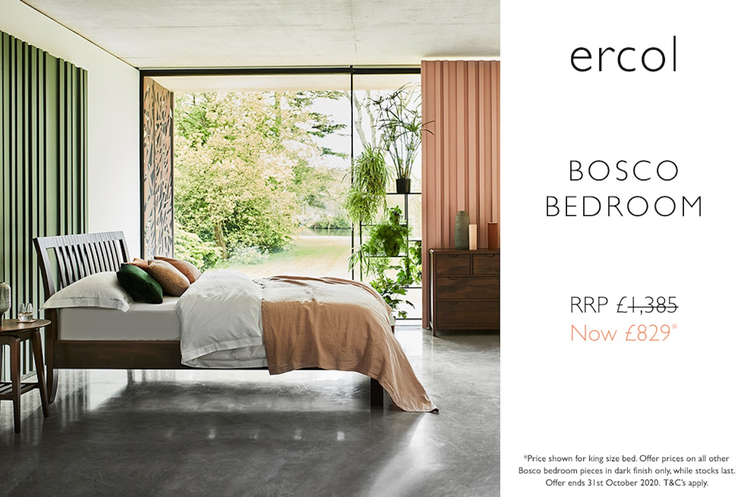 ercol Bosco promotion